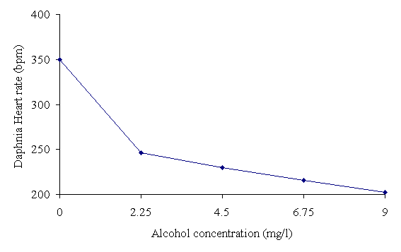 the effects of alcohol and caffeine on the heart rate of daphnia magna
