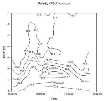 C:\Users\ΠΑΝΟΣ\Desktop\Data plots for Thursday-key skills assignment\salinity contour(1).JPG