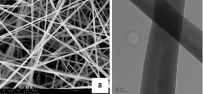 electrospinning for encapsulating functional ingredients By electrospinning technique: a physicochemical study based  encapsulated  functional ingredient that may find uses in food industry ó 2012.