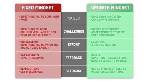 Carol Dweck Mindset - The New Psychology of Success: