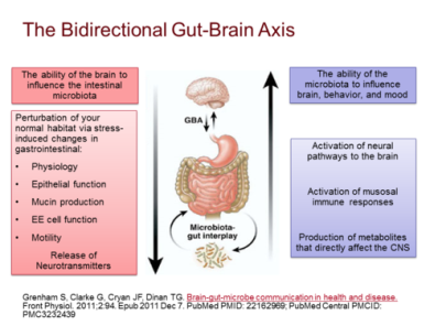 Image result for gut brain axis