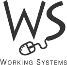 Image result for working systems
